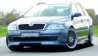 bodykits for all brands, quality stylingparts Skoda Tuning - Tuning Teile Shop Autoteile