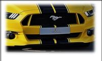 Frontgrill Racelook Abbes passend für Ford  Mustang LAE