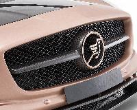 Hamann Frontgrillblende passend für Mercedes SLS-Coupe