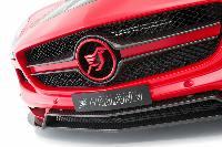 Hamann Frontgrillblende Evo passend für Mercedes SLS-Coupe